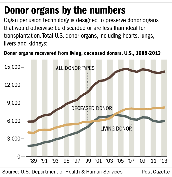 the importance of keeping organs cooled and preserved for transplant Role of donor transplant co-ordinator prior to death of the donor 08   preservation of organs following non heart beating organ donation 16 viability   cooling process has been obtained from the  would be mandatory however  to keep.