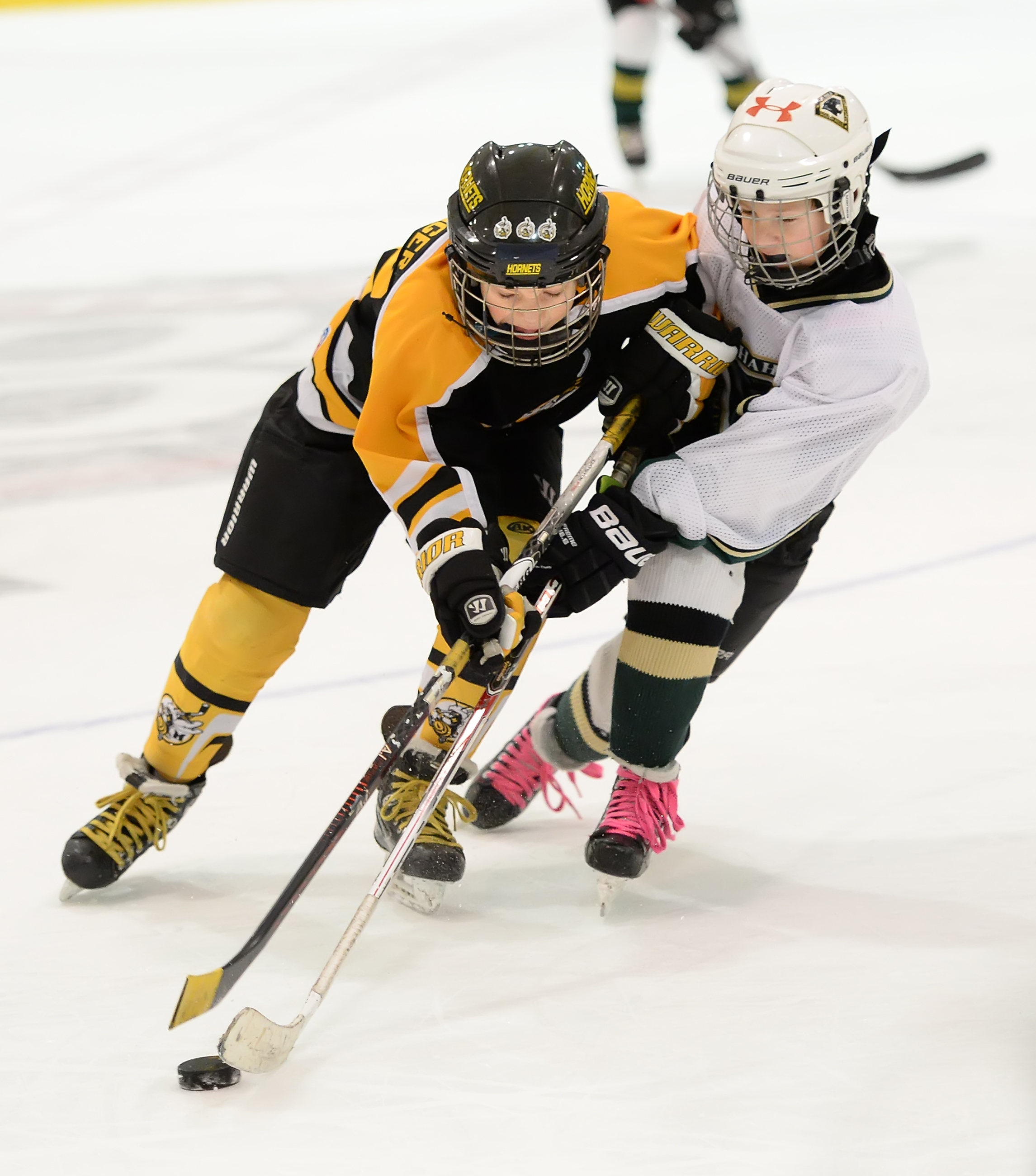South Hills Amateur Hockey