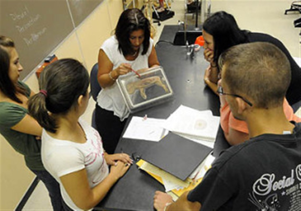 Required courses can boost degree of difficulty | Pittsburgh Post ...