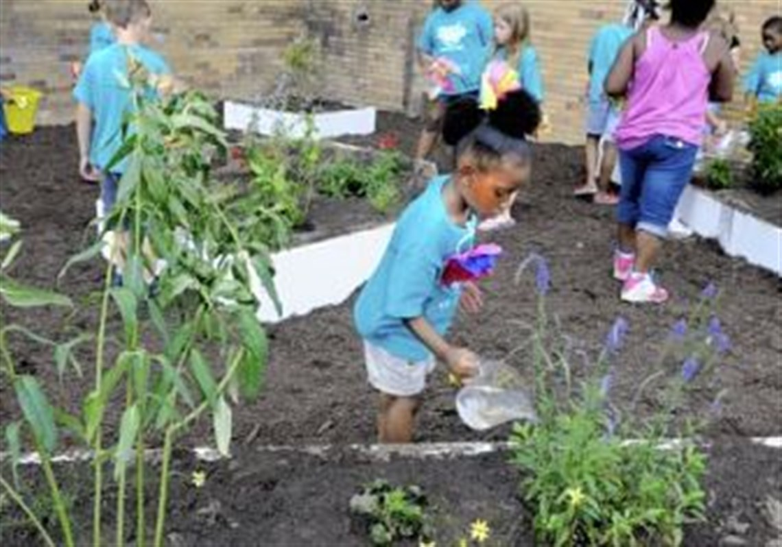 Amya Rivers, 6, Waters The Plants That Students Planted Earlier In The Day  At