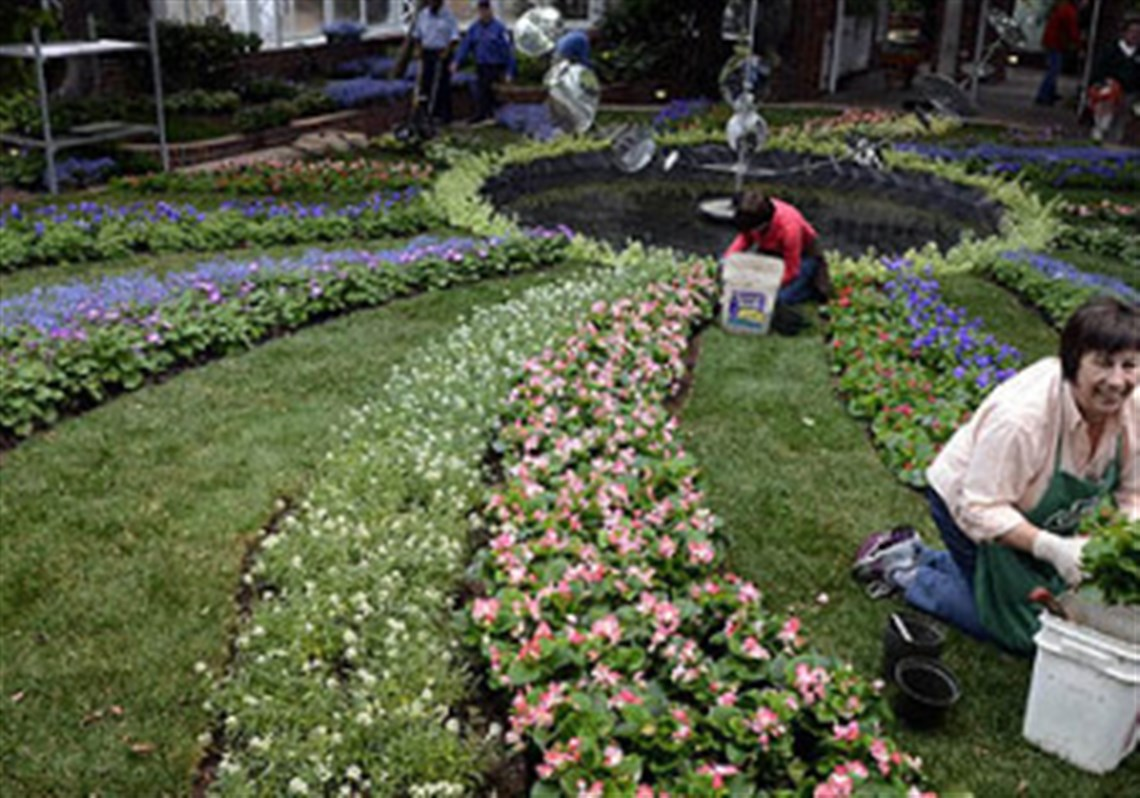 Phipps conservatory spring flower show pittsburgh post gazette in preparation for the phipps spring flower show volunteer kristin diehl plants flowers in the dhlflorist Choice Image