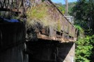 Grass and weeds grow over the rusted beams supporting the old closed sidewalk of the Kenmawr Bridge.