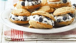 "These are Blueberry-Spice Whoopie Pies from ""Good Housekeeping Family Vegetarian Cooking"""