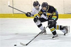 Deer Lakes' Mitchell Rupprecht, right, was in a league of his own this season on the ice.