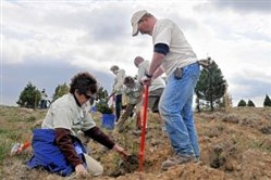 Jeff Kozar of the Pennsylvania Bureau of Forestry, helps volunteers plant a tree seedlings in April 2012 at the Flight 93 National Memorial in Stonycreek, Somerset County. Three years later, hundreds of volunteers are planting more seedlings today and Saturday at the site.