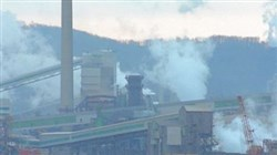 A Clean Air Council petition filed with the U.S. Environmental Protection Agency says the Health Department has failed to issue Title V operating permits among major pollution sources, including U.S. Steel's Clairton Coke Works.