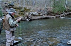 Fayette County's Dunbar Creek is scheduled for a fall stocking of brook and brown trout Oct. 3.