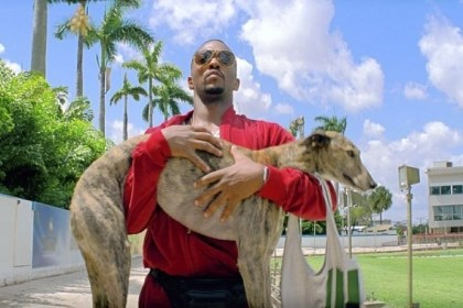 "Anthony Mackie in ""Pain & Gain"" Anthony Mackie steals a greyhound in ""Pain & Gain."""