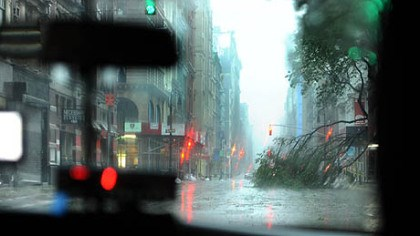 Downed tree A downed tree can be seen from inside a New York City taxi en route to Battery Park as Hurricane Irene hits the area.