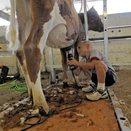 Fairs The Westmoreland County Fair starts Aug. 16.