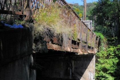 grass and weeds, Kenmawr Bridge Grass and weeds grow over the rusted beams supporting the old closed sidewalk of the Kenmawr Bridge.