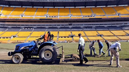 Hard at work Workers pull a 1,900-pound piece of sod into place with rakes as it unrolls from behind a tractor at Heinz Field yesterday.