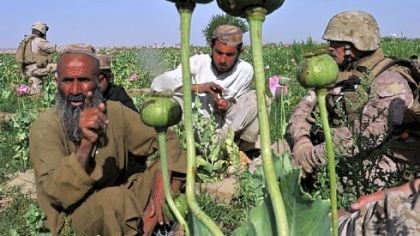 Helmand province Rudy Ayala, right, a law enforcement professional embedded with the U.S. Marines, questions opium poppy farmer Abdul Manan, left, and his two sons at Maranjan village in Helmand province.