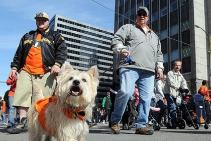 "John Henning and his dog John Henning of Shaler keeps a firm leash on his dog, Boscoe, as they join thousands of walkers in the annual ""Walk MS: Pittsburgh"" event Downtown."