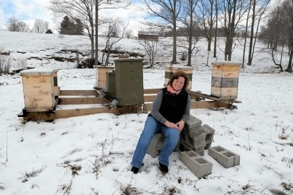 Karen Mosholder Karen Mosholder, owner of Bumbleberry Farms, with some of her hives at her rural Somerset home.