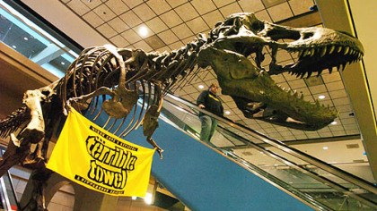 T-Rex with the Terrible Towel A Steelers terrible towel hangs on a T-Rex model at the Pittsburgh International Airport in January 2006.
