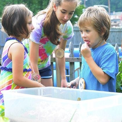 Xavior Barricella Xavior Barricella, 5, right, of Millvale, tries lettuce at the Millvale Community Library garden. Allison Gould, 14, center, of Fox Chapel, founded the Millvale Junior Gardeners for a Girl Scouts Silver Star award. Lilly Grace Granger, 6, and also of Millvale, is also in the Junior Gardeners.