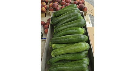 Zucchini When life hands you zucchini, make Zucchini Patties or Grilled Chicken Ratatouille.