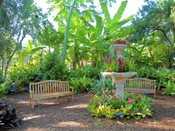 Selby Gardens in Sarasota provides a rich floral retreat and ...