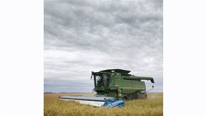 A combine harvests rice A combine harvests rice in a field near Alicia, Ark., in September 2011.