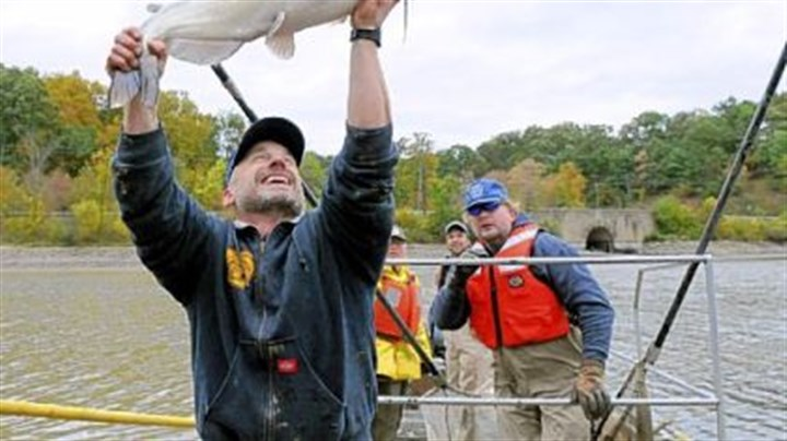 North park lake fish go to new home pittsburgh post gazette for Pa boat and fish commission
