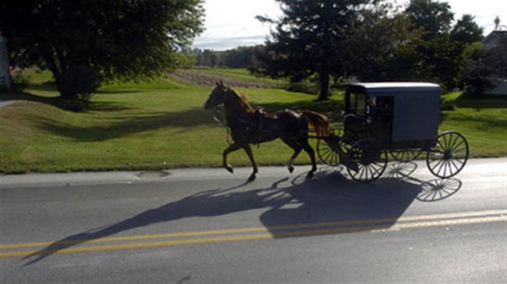 An Amish buggy An Amish buggy