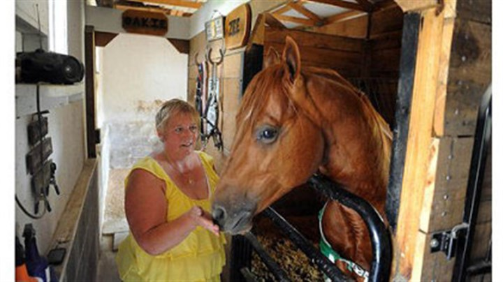 Beth Voyles of Washington, Pa., Beth Voyles of Washington, Pa., pets one of her horses, G.R. Shakin the Piggybank, at her McAdams Road home on Thursday.