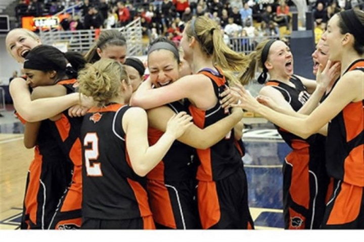 BethelPark Bethel Park teammates celebrate their win against Chartiers Valley in the WPIAL class AAAA championship Saturday.