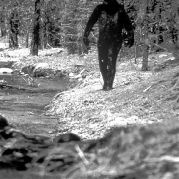 Bigfoot A 1977 still photo made from a 16 mm film by Ivan Marx reportedly showing the legendary Bigfoot in the hills of northern California.