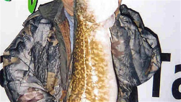 Bill Davis Bill Davis of Kane, Pa., holds a 411/2-inch burbot caught in Lake Erie.