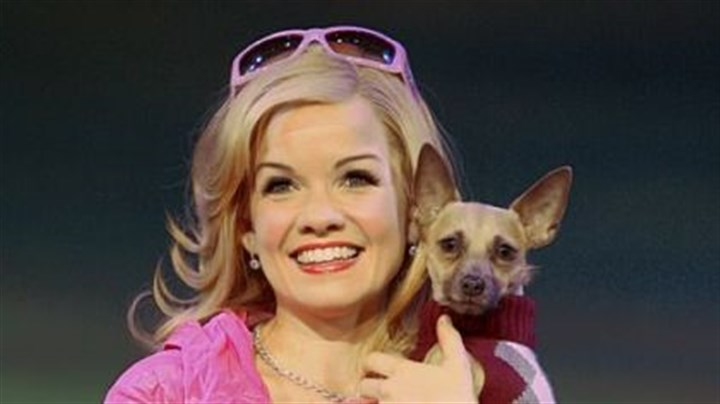 "Blonde0611 Becky Gulsvig is Elle Woods and Frankie is Bruiser in ""Legally Blonde the Musical"" at the Benedum."