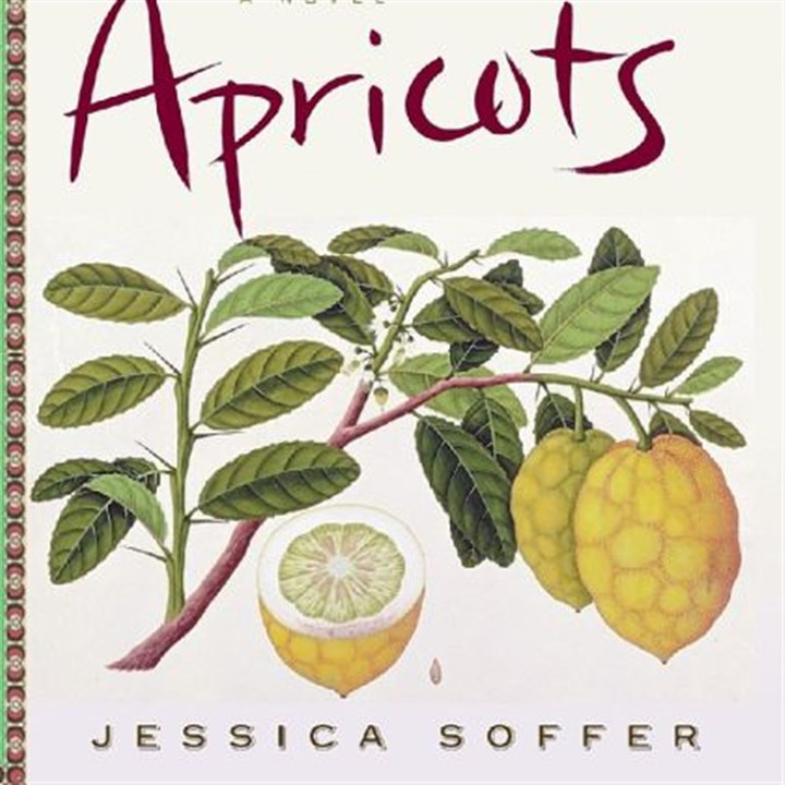 "Book review ""Tomorrow There Will Be Apricots"" is Jessica Soffer's first novel."