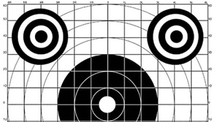 Doing an annual sight-in check Doing an annual sight-in check of your sporting arm's accuracy isn't enough. The best hunters understand their ammunition's trajectory at a variety of distances.