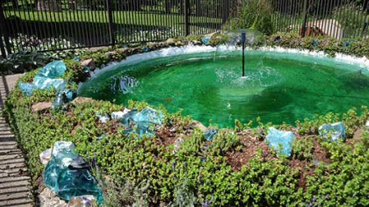 Fish pond This fish pond is what triggered Laura Patterson-Santore of Smock, Pa (near Uniontown) to renovate the Our Lady of Victory Prayer Garden at Mt. Saint Macrina in Uniontown.