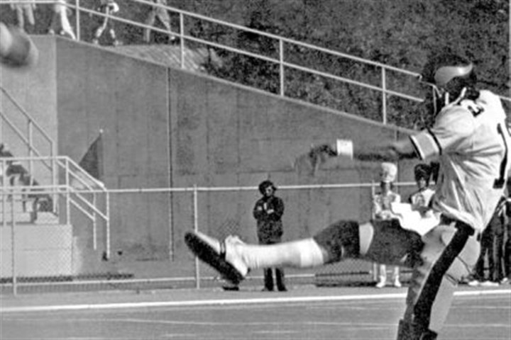 Marino punts Marino punts during a 1979 game. A future Pro Football Hall of Fame quarterback, he kicked off, place-kicked and punted during his senior year with the Vikings.