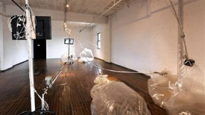 "Mat Brazilian artist Mariana Manhaes' refers to her ""Thesethose"" installation as ""organic machines."""