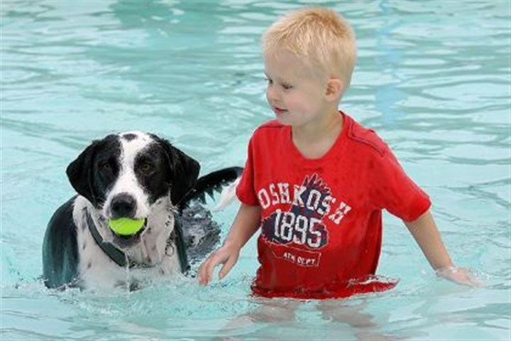 Nick Buriak Nick Buriak, 3, plays with his family's dog, Nup, at the Crafton pool Sunday afternoon. The pool was opened to dogs to raise money for pool repairs.