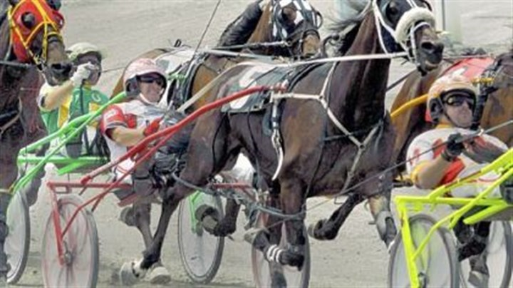Palone Dave Palone, center, driving Smartiscape (5), tries to hold onto his position in the pack of horses during a June race at The Meadows Racetrack and Casino in Washington.