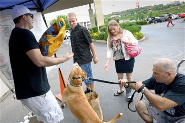 perna Volunteer Ben Perna, right, tries to restrain his 5-year-old dog Zoe Jane as Jonathan Plesset, co-founder of Pittsburgh Aviation Animal Rescue Team holds donated food from Cortney and Justin Broestel of Pleasant Hills on Saturday at The Mall at Robinson.