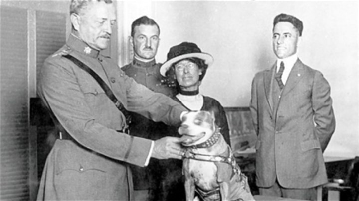 Sgt. Stubby Sgt. Stubby was made a life member of the American Legion, Red Cross and YMCA. In 1921, the Humane Education Society awarded him a special gold medal for service to his country. It was presented by Gen. John J. Pershing.