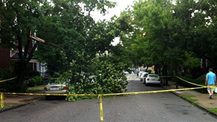 storm photos A downed tree is blocking Howe Street in Shadyside.