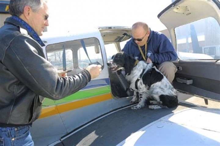 Transport Pilots Pete Lehmann, left, and Rob McMaster, an Upper St. Clair police officer, arrive at Allegheny County Airport with Ranger, an English setter they transported by plane as volunteers for Pittsburgh Aviation Animal Rescue Team.