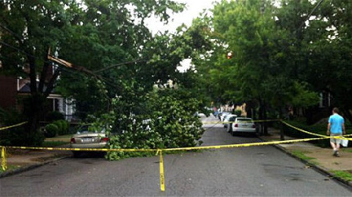Tree down in Shadyside A downed tree blocks Howe Street in Shadyside after heavy thunderstorm swept through the region Wednesday.
