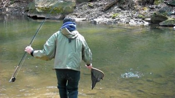 Unusual summer weather left more trout in the creeks for Fishing in pittsburgh