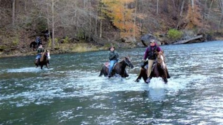 Trout wrangler riders Trout wrangler riders ford the Bluestone River. Farthest rider from camera, on horse on far bank is Edwa Meek. Nearest rider on the far riverbank is Dale Davis. Then, from left, riders in the river are: Preston Snow, Aaron Moyer and guide Anthony Lilly.