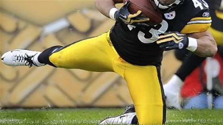Troy Polamalu Steelers safety Troy Polamalu has not played since Nov. 15.