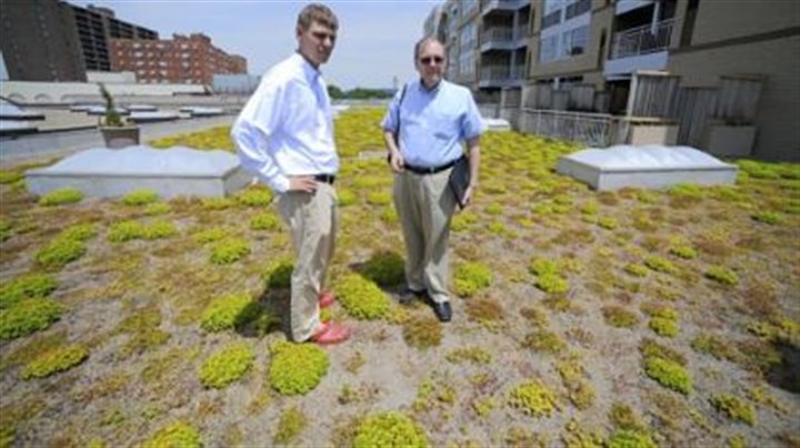 Up top Jason D. Monnell, research assistant professor and Dr. Ronald Neufeld on the green roof above the Giant Eagle in Shadyside next to the Market House condominiums.