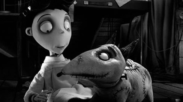 "Victor and Sparky Victor happily examines his beloved dog, Sparky, after he successfully brings him back to life in ""Frankenweenie."""