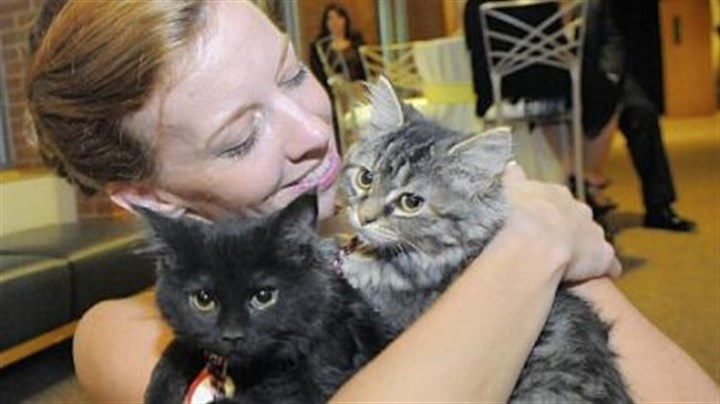 Victoria Martin Victoria Martin and two kittens her boyfriend adopted at Animals Friends Black Tie & Tails gala