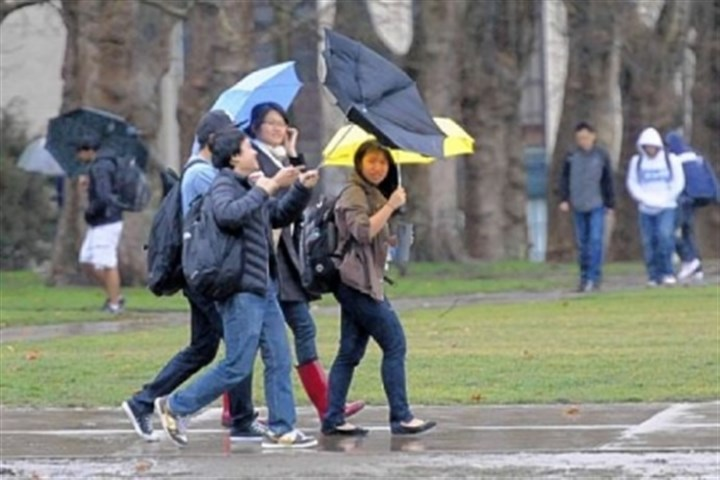 weather A student crossing The Cut at Carnegie Mellon University suffers an umbrella malfunction in the wind following Wednesday morning's downpour.